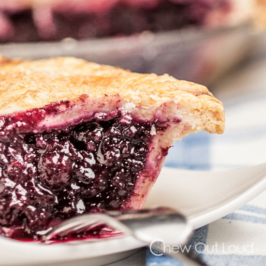 Blueberry pie butter crust
