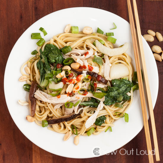 One-Pot Asian Noodles