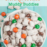 Peanut Butter Snickerdoodle Puppy Chow