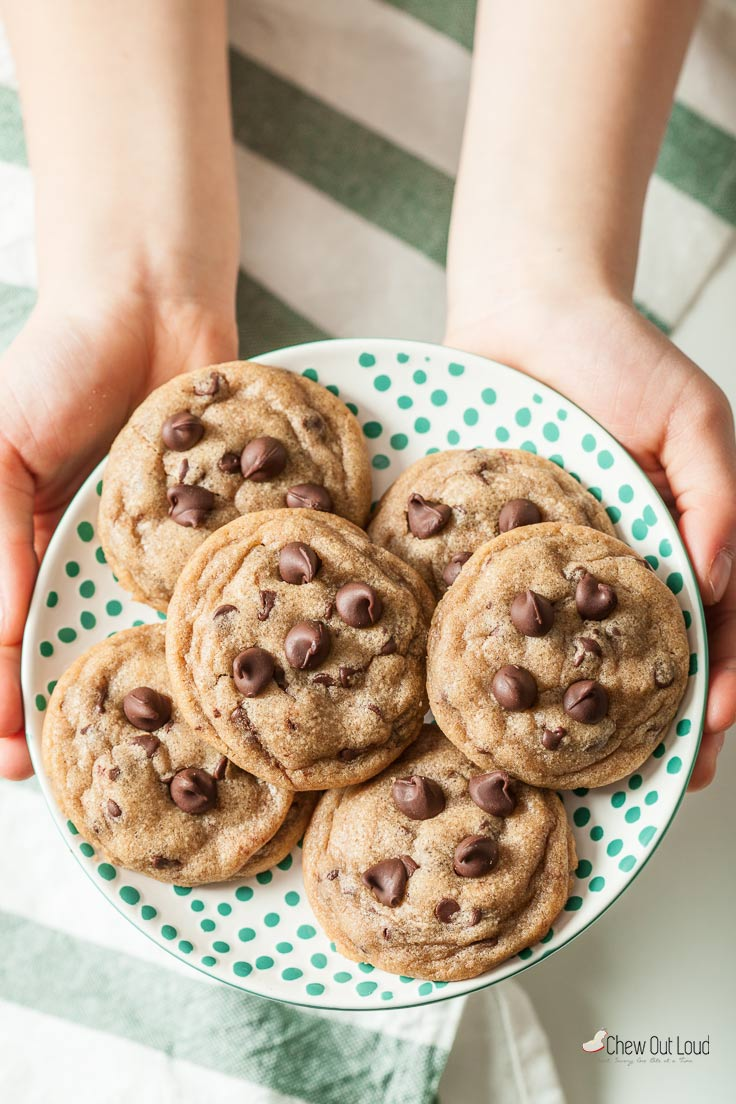 Perfect Chocolate Chip Cookies (Cook's Illustrated) - Chew Out Loud